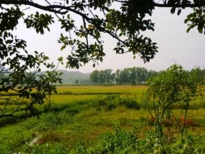 1 Chittagong - Rangamatti road