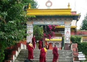 1 Shechen Monastery-Boudhanath, Nepal